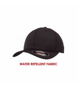Flexfit cap Black TF-20