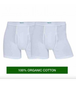 JBS 2-pack underbuks 100% organic cotton-20