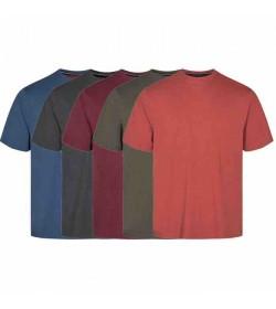 Signal 5-pak Eddy t-shirts multi farvet-20